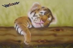 leeuwtje op papier 30x40 cm