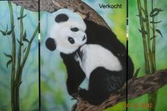 panda- op Hout Drieluik Grootste luik 60x80 cm