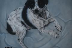 Kruising-Markies-Hond-Fabio op Doek 40x50 cm