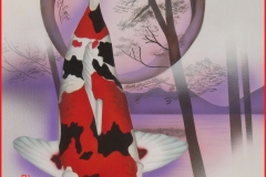 Japanse-koi-Showa-sanshoku-op-doek 30x40 cm
