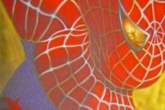 Spiderman-op-doek 40x50 cm